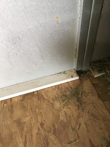 Rodent Prevention Flooring