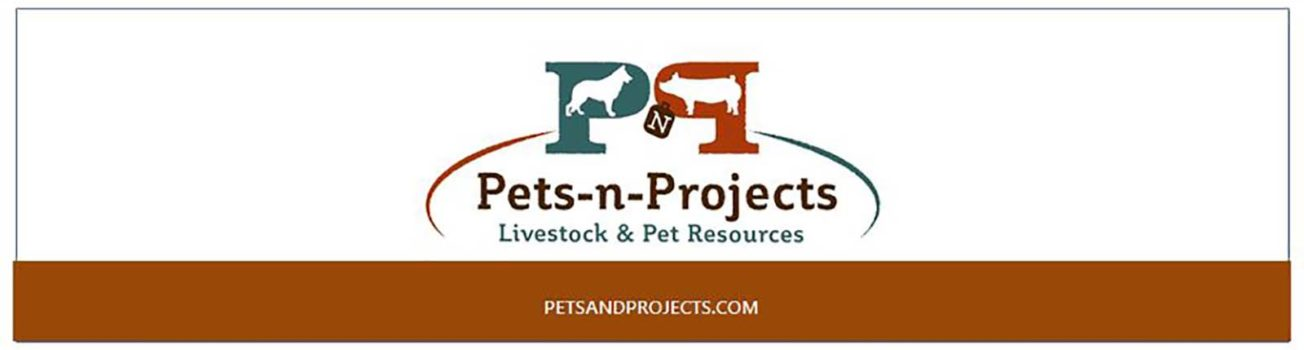 Petsandprojects Header - Dark Orange1600
