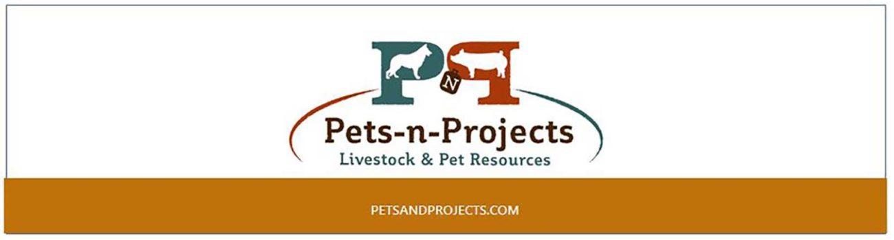 Petsandprojects Header - Orange Gold1600